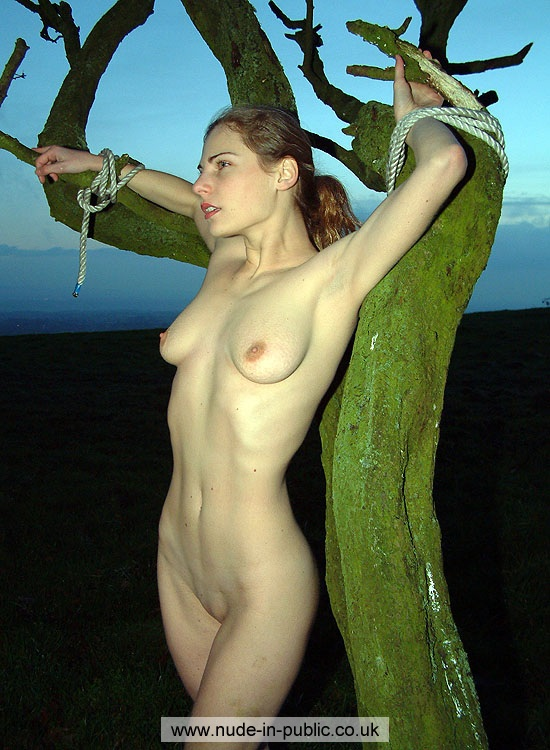 tied Nude tree